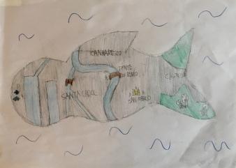 011 Istituto Figlie di San Giuseppe del Caburlotto Venezia - Ponte Educativo Mediterraneo - Venezia Pesce di Pace